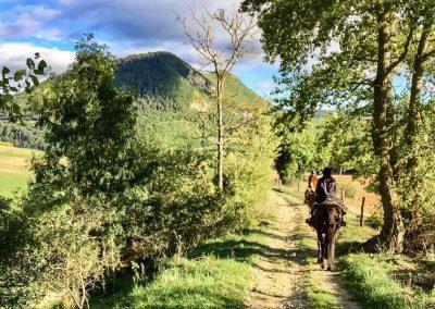 nomadrandoacheval randonnee cheval tourimse nant larzac st alban