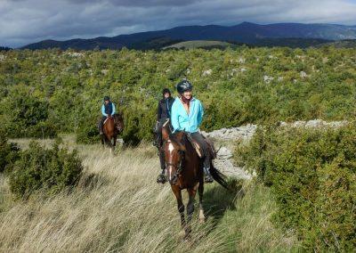 nomadrandoacheval larzac buis steppe