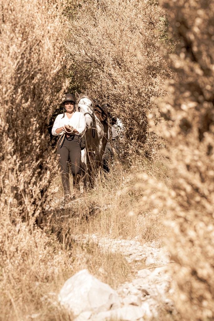 nomadrandoacheval cavaliere randonnee larzac cheval a pied sepia