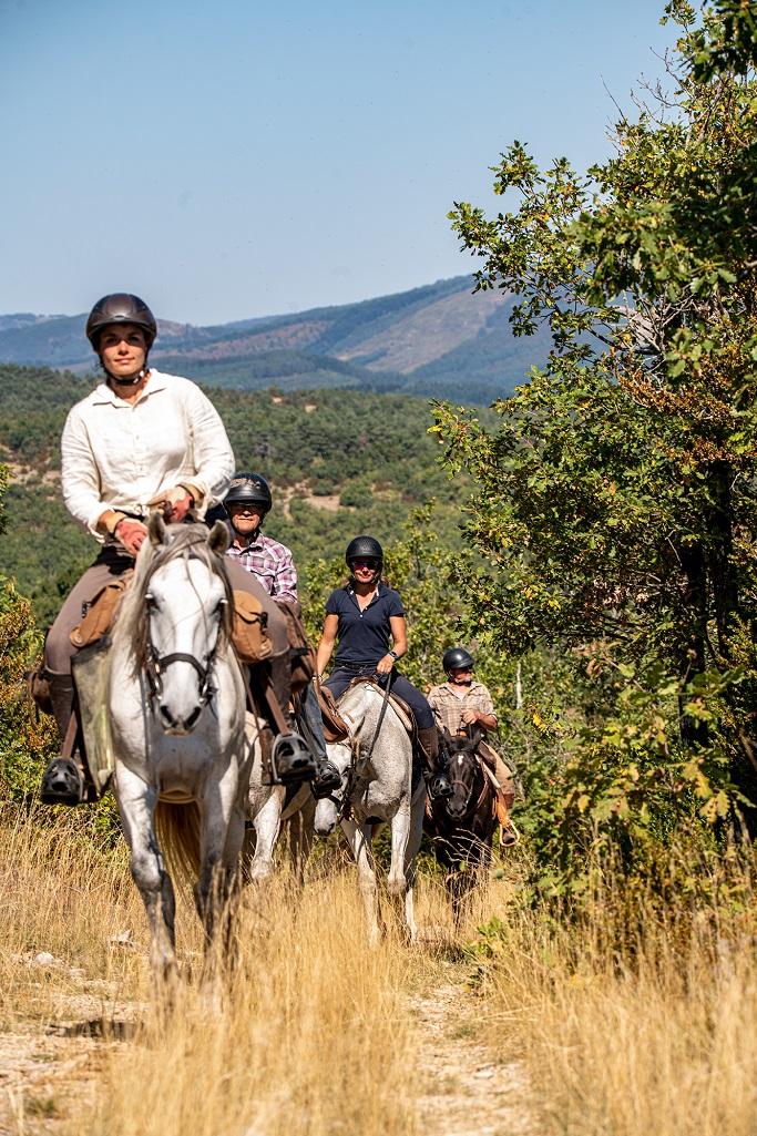 nomadrandoacheval cavaliers randonnee chevaux larzac