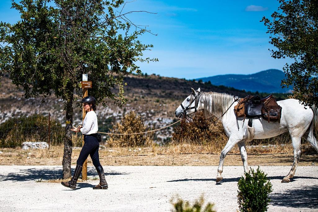 nomadrandoacheval cavaliere cheval cirque navacelles