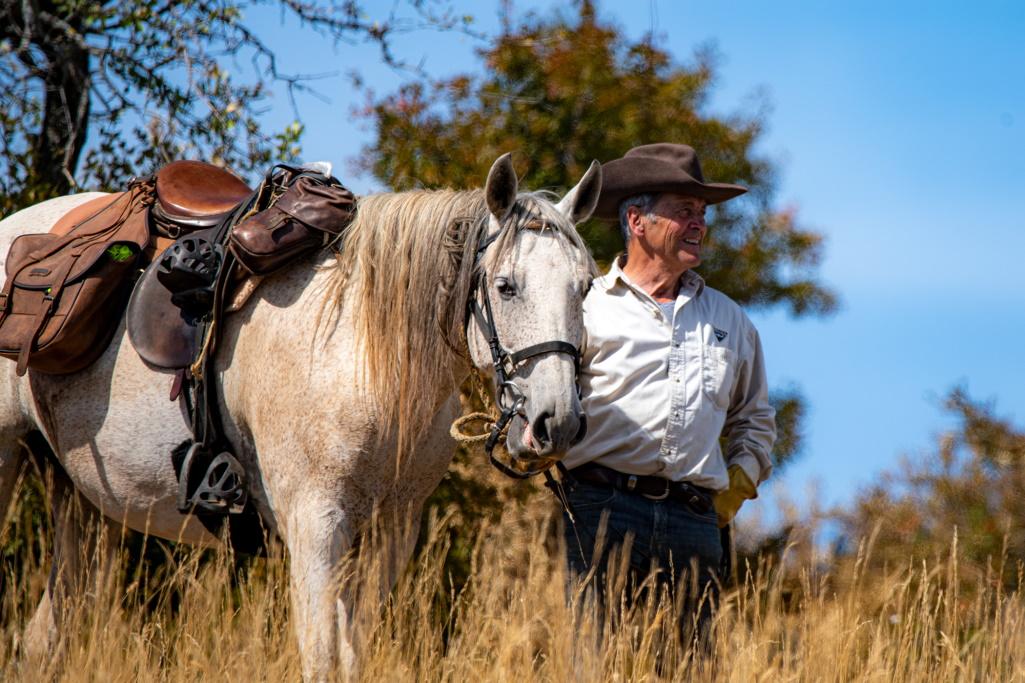 nomadrandoaceheval cavalier cheval sourire blue sky yellow grass