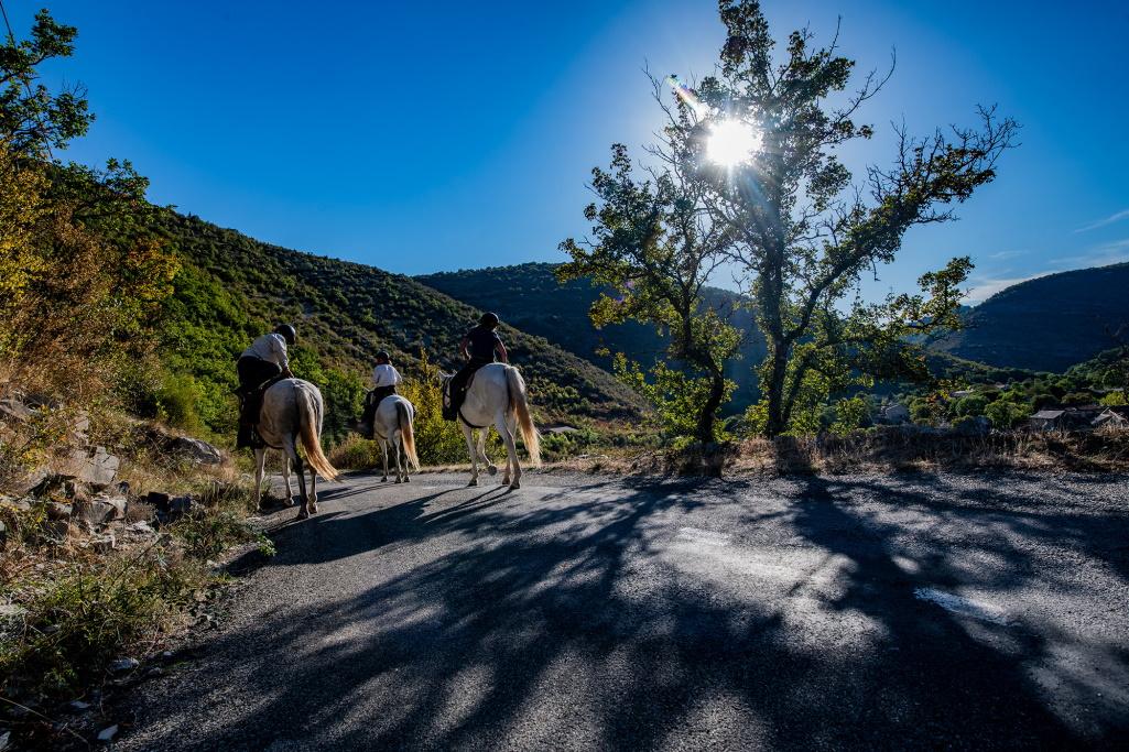 nomadrandoacheval cavaliers soleil chevaux sejour route nature vissec